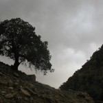 چکاو(چپ کوه) منطقه منگره بخش الوار گرمسیری اندیمشک - مزگان قلاوند